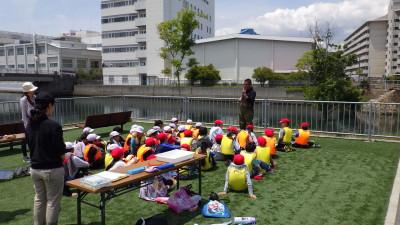 20190515浜山小観察会 (134)
