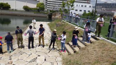 20190515浜山小観察会 (99)